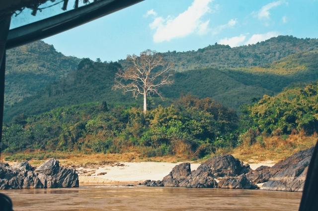 laos135