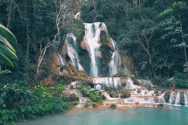 laos155